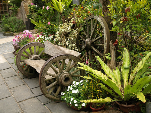 деревенский стиль сада