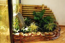 группировка комнатных растений