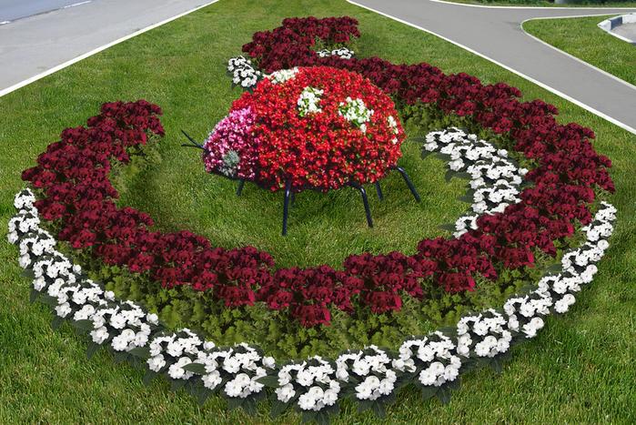 Красивые клумбы из красных и белых цветов для приусадебного участка