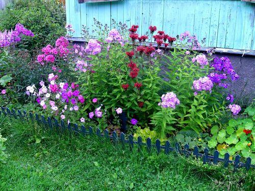 Палисадник около дома с цветами