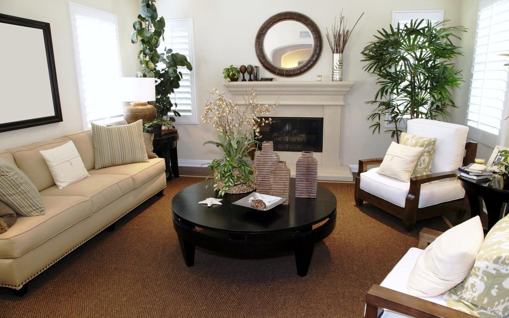 Декоративное цветоводство озеленение гостинной