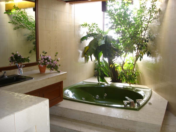 Декоративное цветоводство ванная комната растительный дизайн