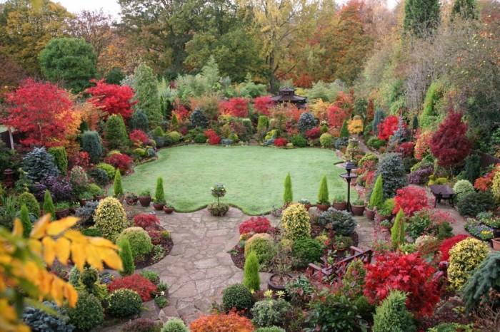 Декоративное цветоводство, цветочный сад фото