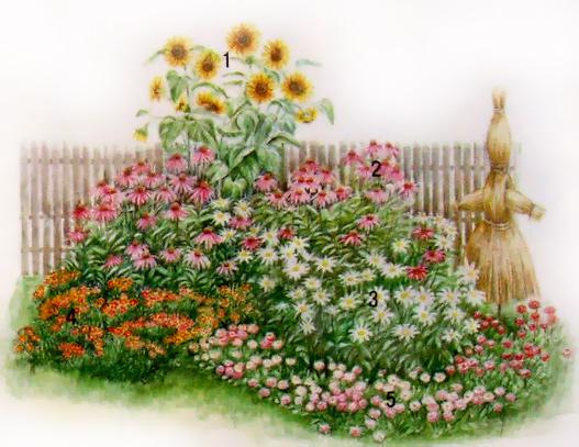 схема оформления цветника