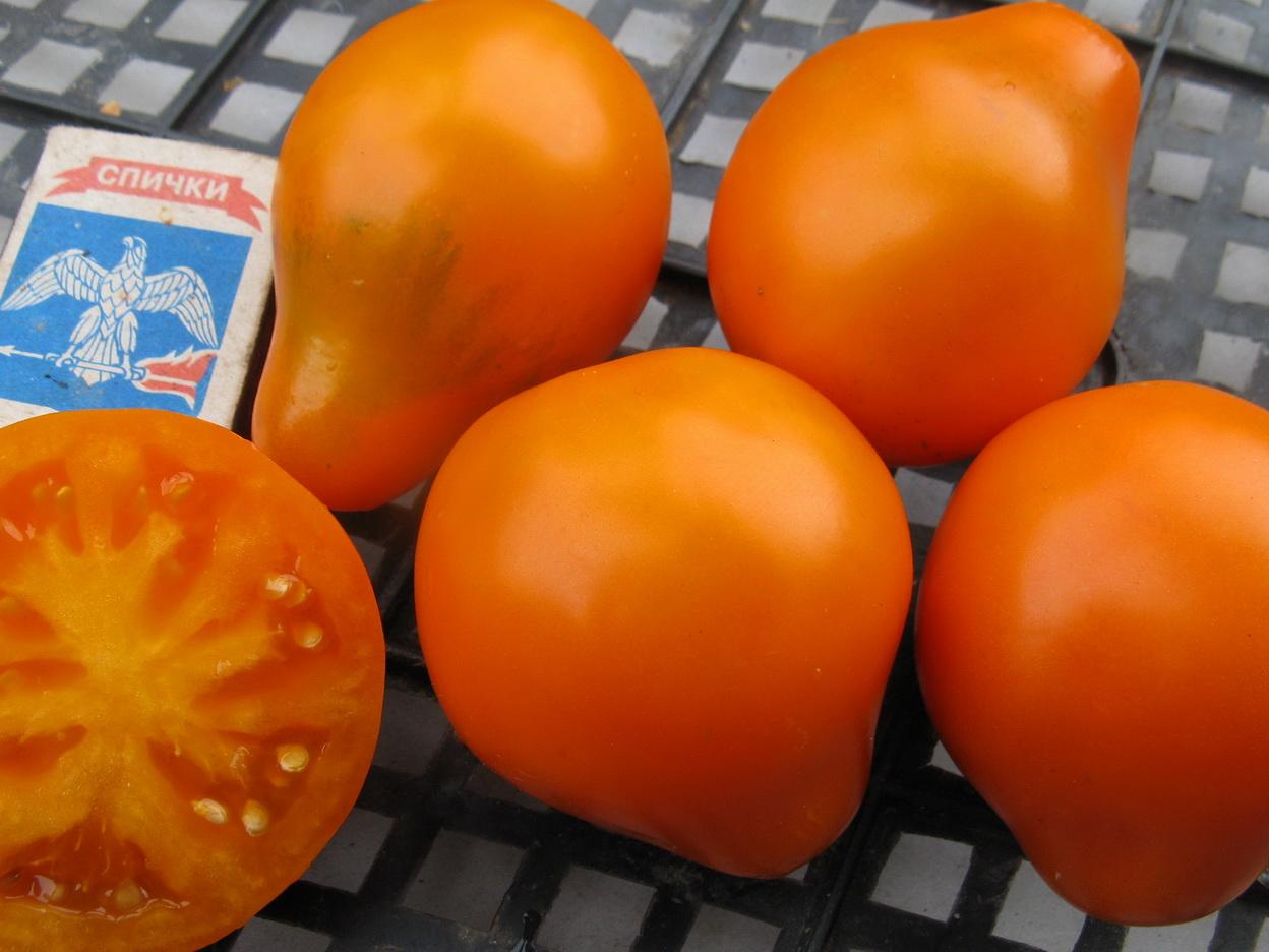 желтые помидоры трюфель