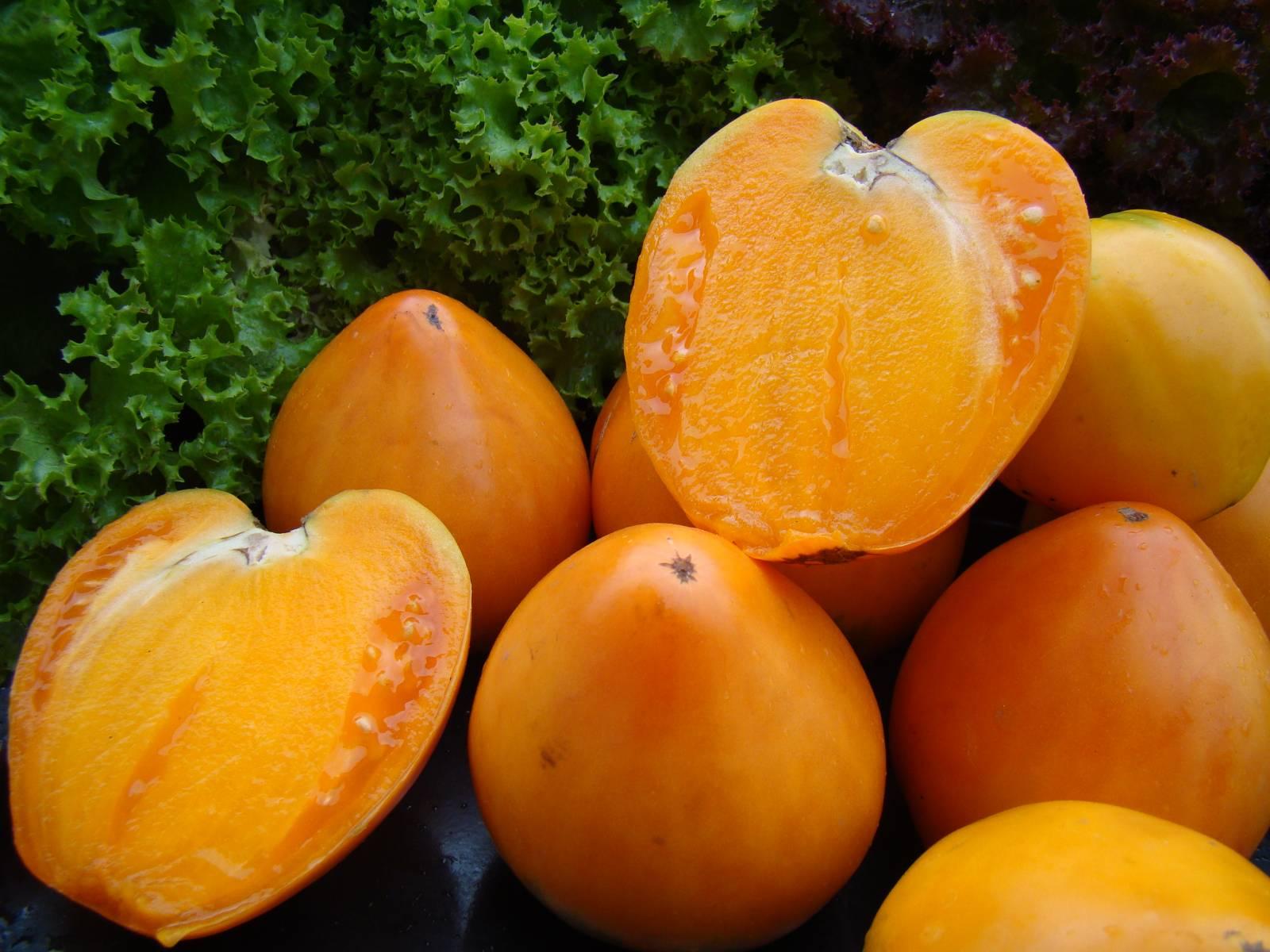 желтые помидоры сорта хурма