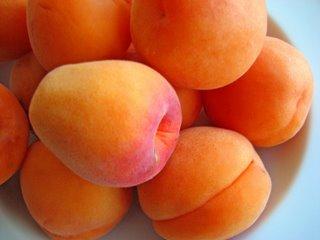 поздние сорта абрикос искра